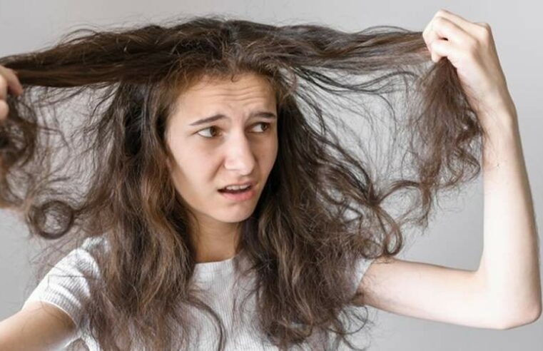 Dicas de como tratar cortar e pentear cabelos crespos