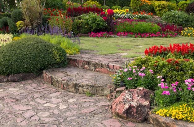Confira dicas de como montar um jardim interno perfeito!